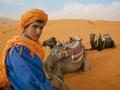 Camel Caretaker